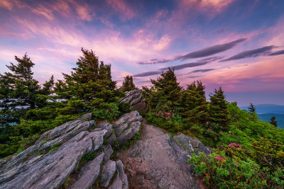 Grandfather Mountain Nature Photography Weekend