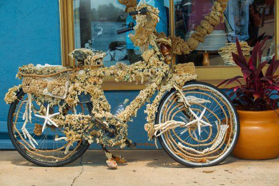 Bicycles in Tarpon Springs